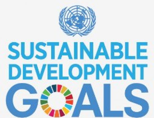 10 ways an individual can contribute to the UN Sustainable Development Goals