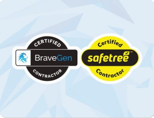 First Safetree Certificates Sent Out