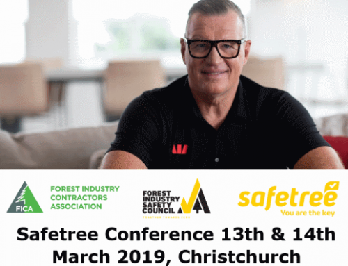 2019 Safetree Conference: Partnering For Change